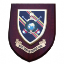 Royal Marines Physical Training Regimental Military Wall Plaque